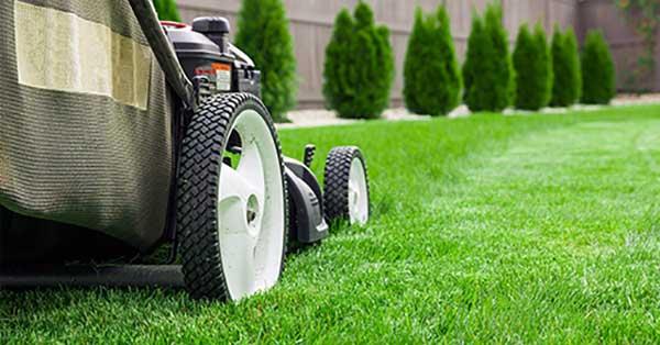 开展草坪修剪业务的方法