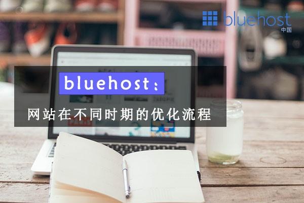 bluehost:网站在不同时期的优化流程