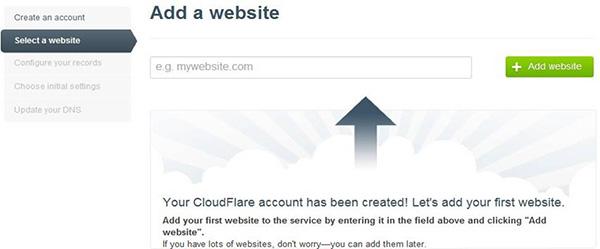 输入网站域名