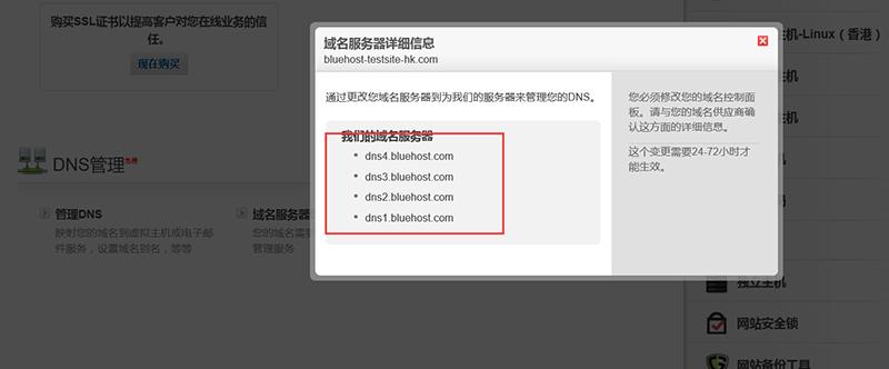 点开后记录域名服务器的参数