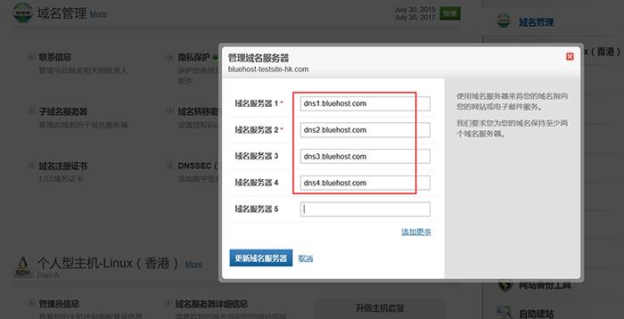 获取的DNS填入域名服务器中