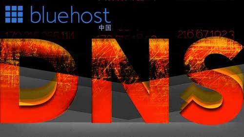 如何通过BlueHost中国的DNS服务管理资源记录类型(RR)