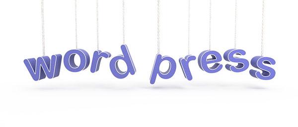 WordPress Pro介绍