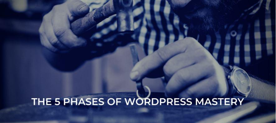 WordPress的五个阶段你都知道吗(二)