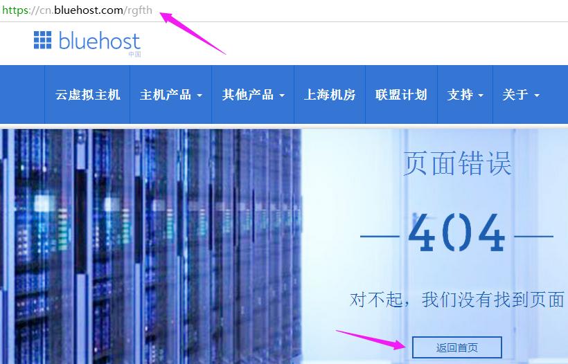 检查404页面设置效果及返回状态