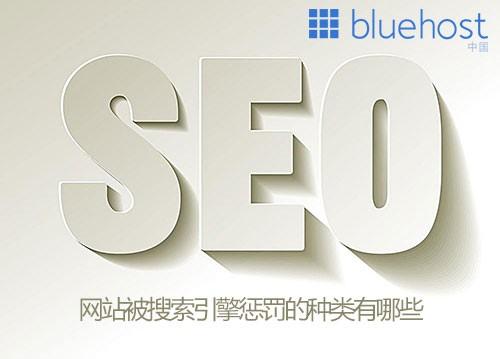 搜索引擎对网站惩罚的种类有哪些