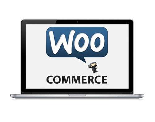 WooCommerce与Magento
