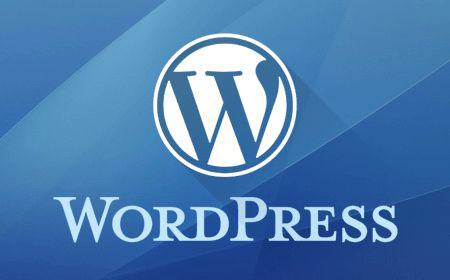 WordPress建站/WordPress主题和插件知识大全,一目了然!