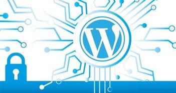 如何用 WordPress 创建一个非营利网站[分步指南]